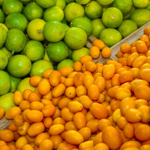 Produkte | Limetten und Kumquats